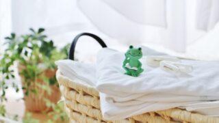 梅雨の洗濯物の匂い